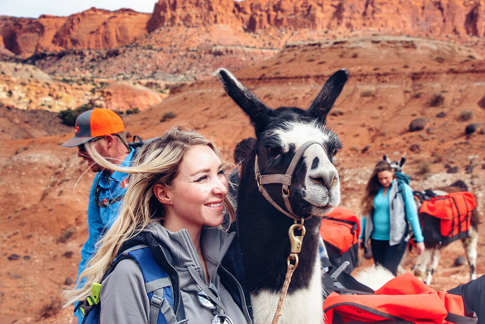 Capitol Reef Utah - Pack Llamas - Multi-Day Treks