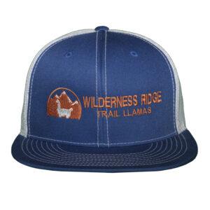 blue flat brimmed hat
