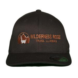 brown baseball hat