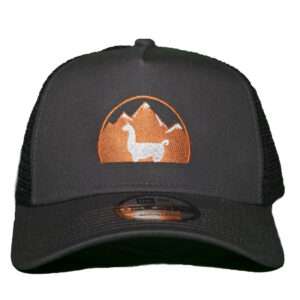 dark grey ranger hat