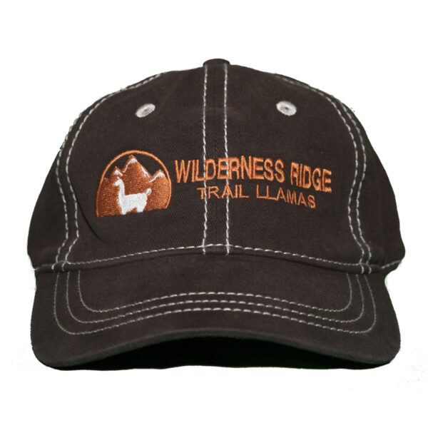 women's brown baseball hat