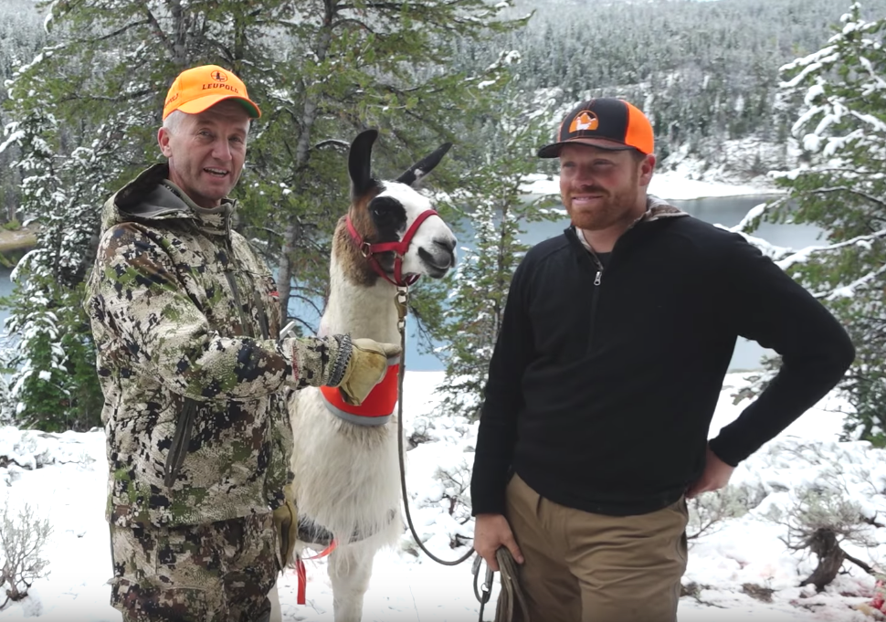 Llamas Will Extend My Backcountry Elk Hunting Days - Randy Newberg & Beau Baty with Wilderness Ridge Trail Llamas