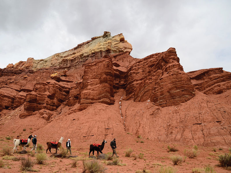 The Explorer - Capital Reef Day Hike