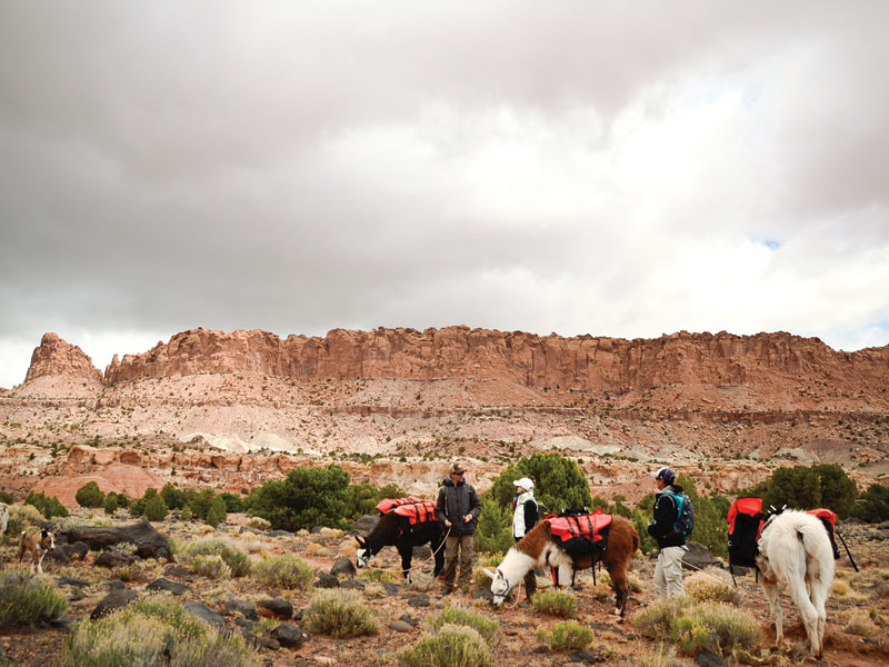The SiteSeer - Capital Reef Day Hike